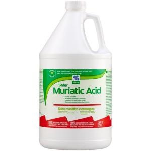 MURIATIC ACID 1 GALLON