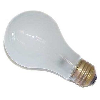 100 WATT ROUGH SERVICE BULB