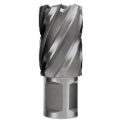 EVOLUTION SLUGGER BIT 1-Inch Diameter x 2-Inch Depth